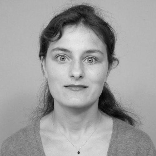 Ani Guerdjikova